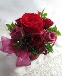 画像5: Red roses (5)