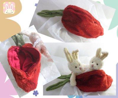 画像1: Rabbit in the carrot