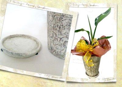 画像2: ストレリチアの鉢植えギフト
