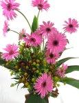 画像2: ガーベラのポット付き花束 (2)