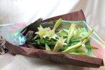 画像2: 鉄砲百合の花束Easter lily (2)