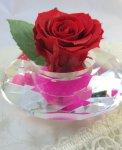 画像4: プリザーブドの赤いバラ〜Applause (4)