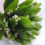画像1: スズランの花束〜Muguet (1)