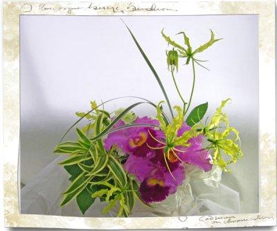 画像3: カトレアの陶器花器ギフトアレンジメント