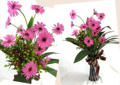 画像1: ガーベラのポット付き花束
