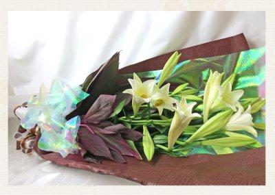 画像1: 鉄砲百合の花束Easter lily