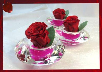 画像3: プリザーブドの赤いバラ〜Applause