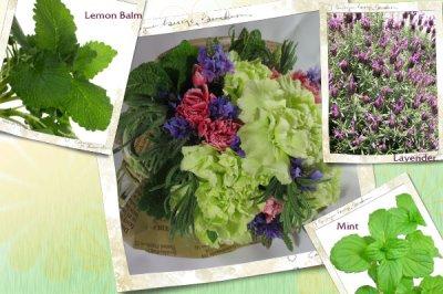 画像1: ラベンダーとハーブの花束〜タッジー・マッジー