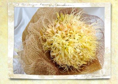 画像3: 秋色リコリスの花束