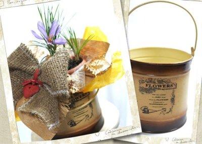 画像2: サフランの鉢植えギフト
