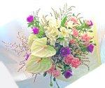 画像5: ストケシアとアンスリウムの花束 (5)