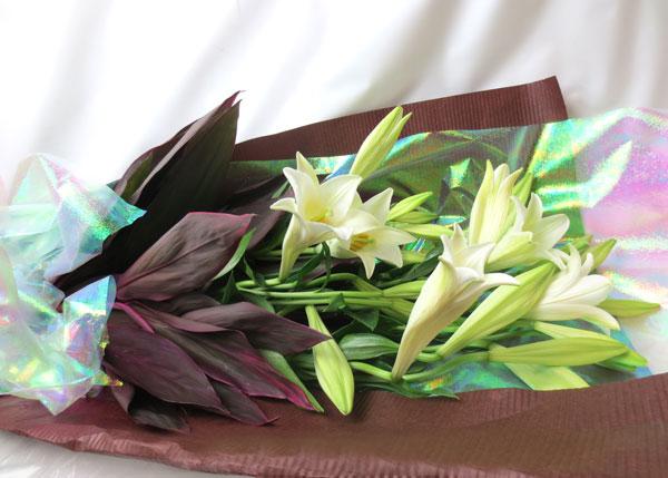 画像1: 鉄砲百合の花束Easter lily (1)