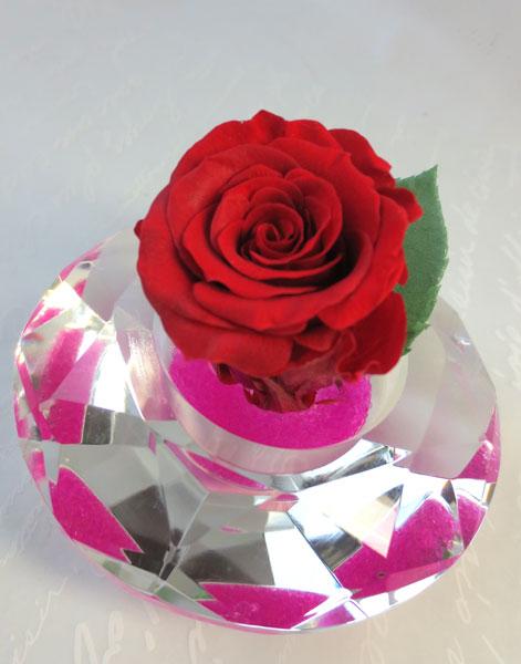 画像1: プリザーブドの赤いバラ〜Applause (1)