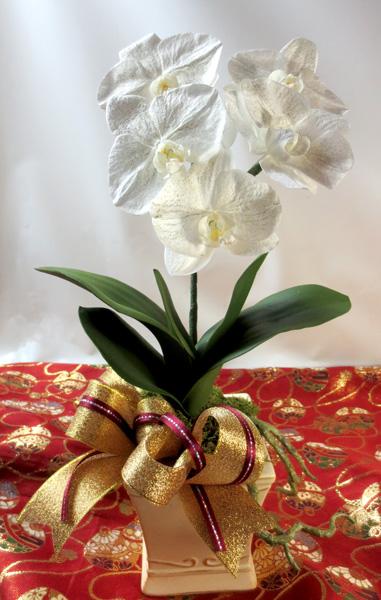 画像1: KOCHOU-鉢植え仕立てのプリザーブド胡蝶蘭 (1)