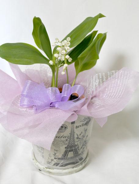 画像1: すずらんの鉢植えギフト (1)