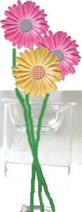 球根水栽培用ガラスポット