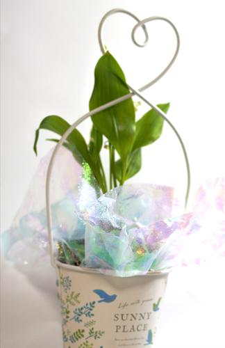 すずらんの鉢植えギフト