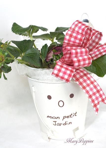 画像1: ガーデンストロベリーの鉢植えギフト (1)