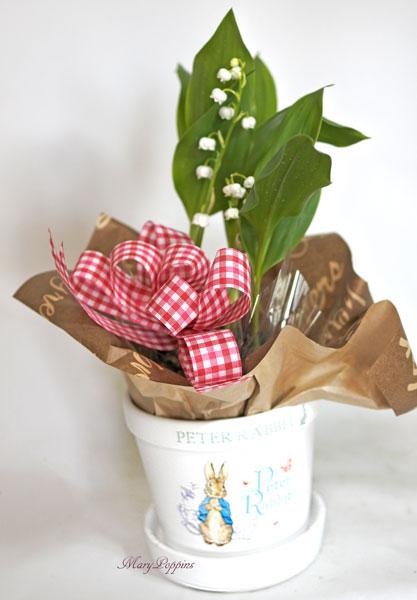画像1: 鈴蘭(スズラン)の鉢植えギフト (1)