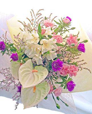 画像1: ストケシアとアンスリウムの花束 (1)